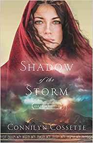 shadowofthestorm