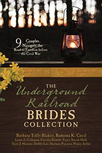 undergroundrailroadbridescollection